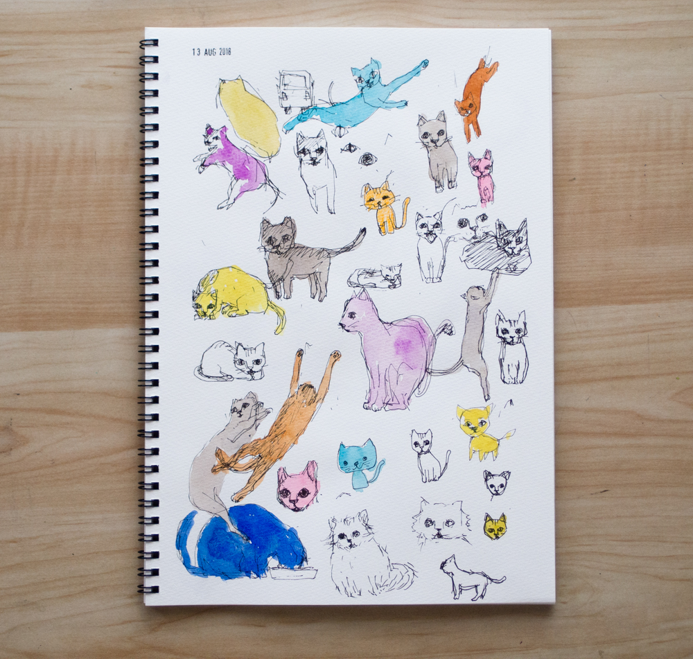 drawing of cats on sketchbook
