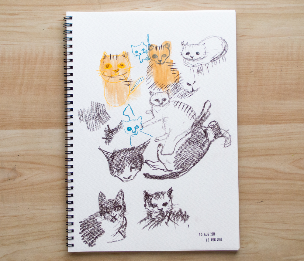 drawing cats on sketchbook